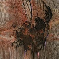 """Album Review: Avey Tare's Slasher Flicks - """"Enter the Slasher House"""""""